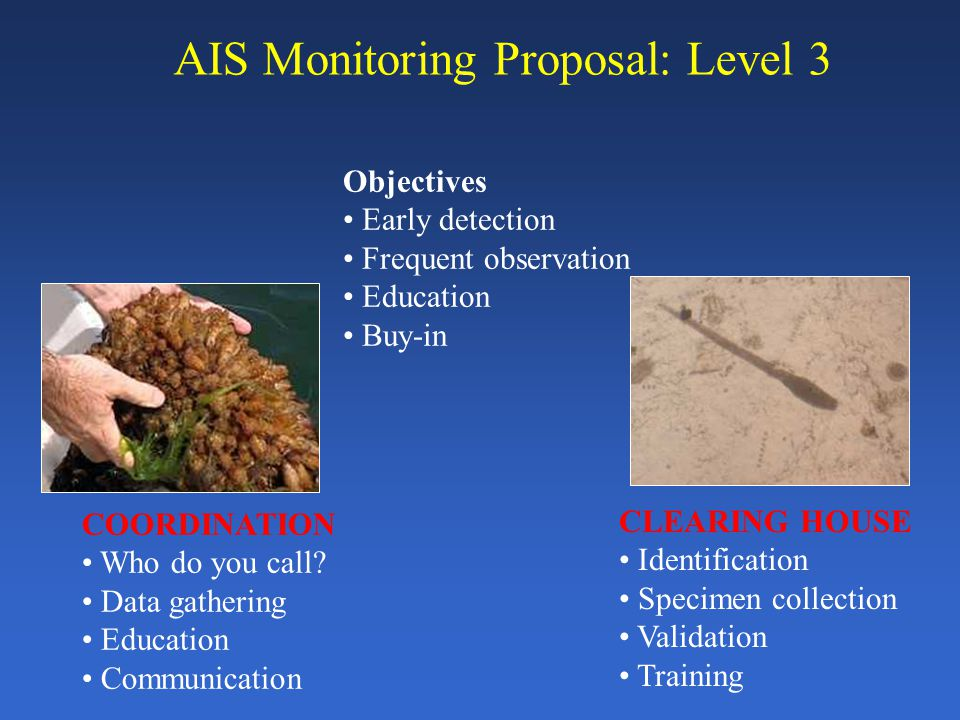 AIS Monitoring Proposal: Level 3 COORDINATION Who do you call.