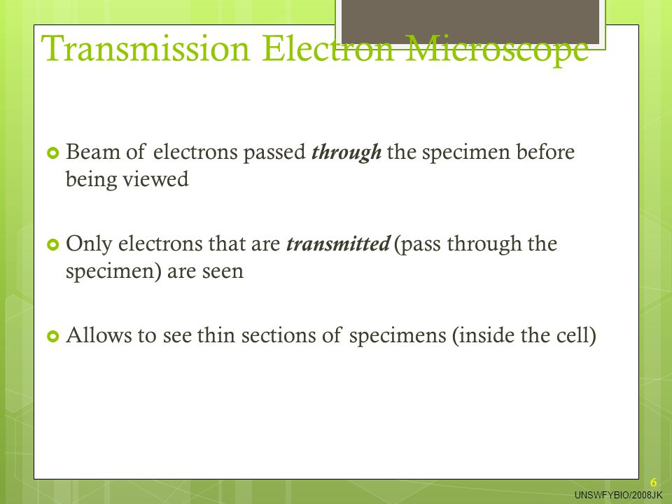 6 Transmission Electron Microscope  Beam of electrons passed through the specimen before being viewed  Only electrons that are transmitted (pass thr
