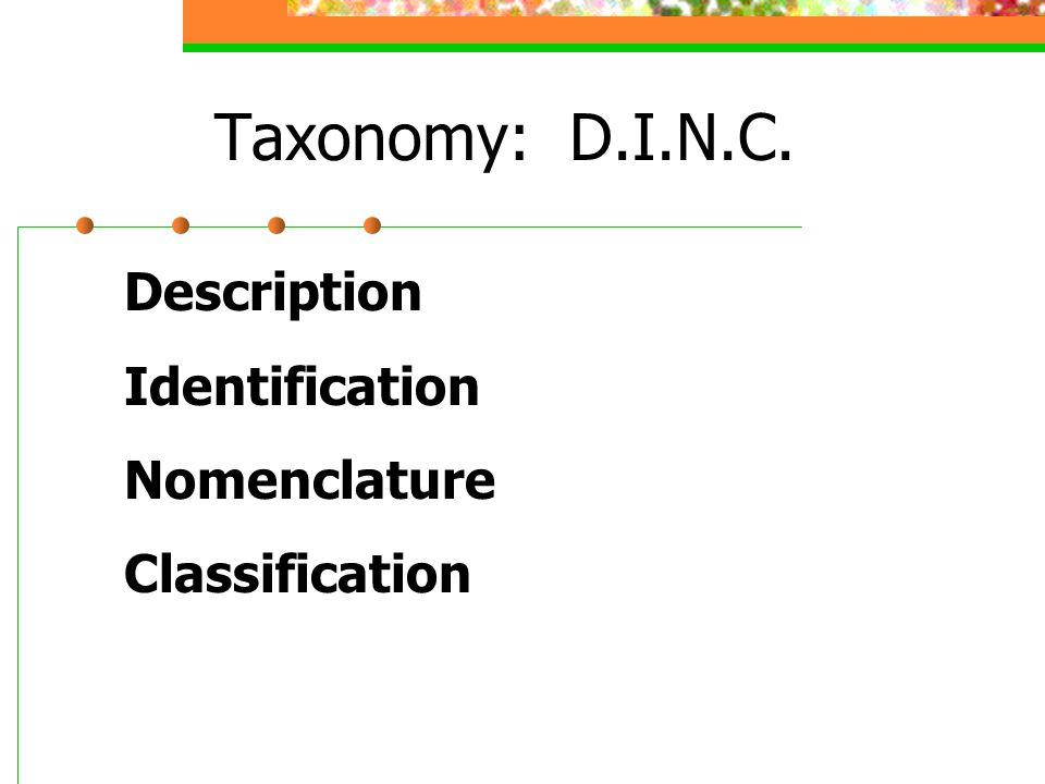 Taxonomy: D.I.N.C. Description Identification Nomenclature Classification