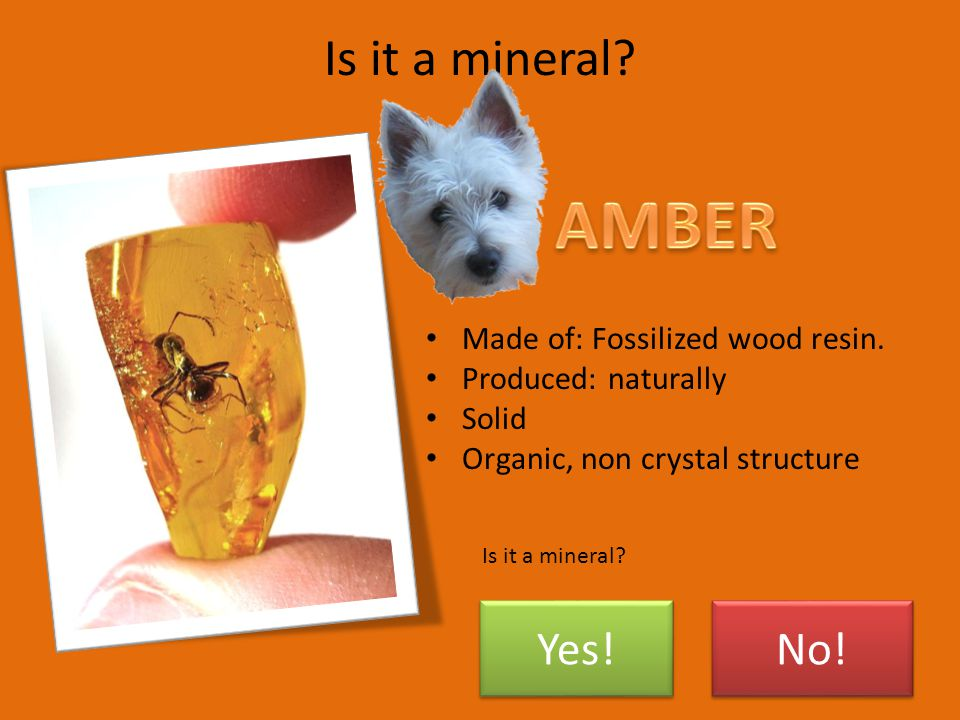 Section 1 – What Is a Mineral.