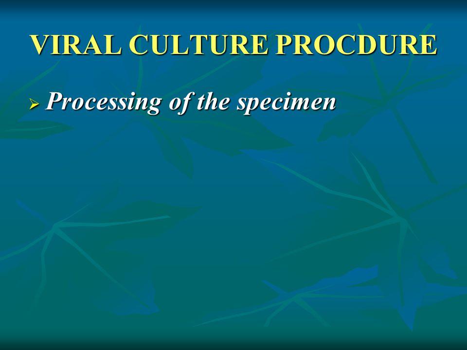 VIRAL CULTURE PROCDURE  Processing of the specimen