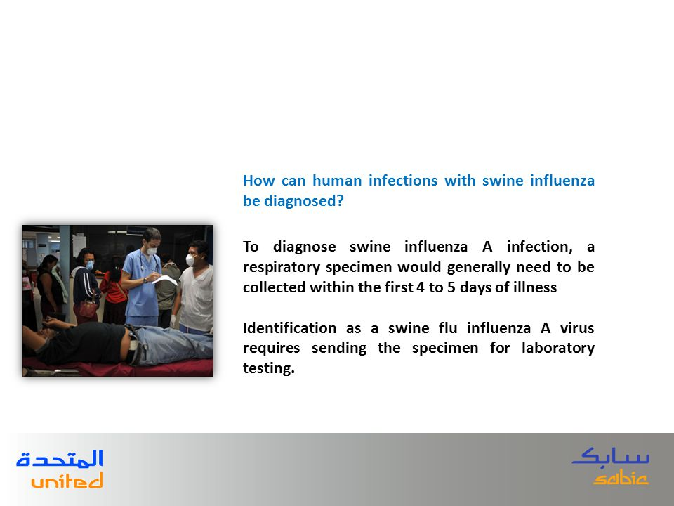 To diagnose swine influenza A infection, a respiratory specimen would generally need to be collected within the first 4 to 5 days of illness Identific