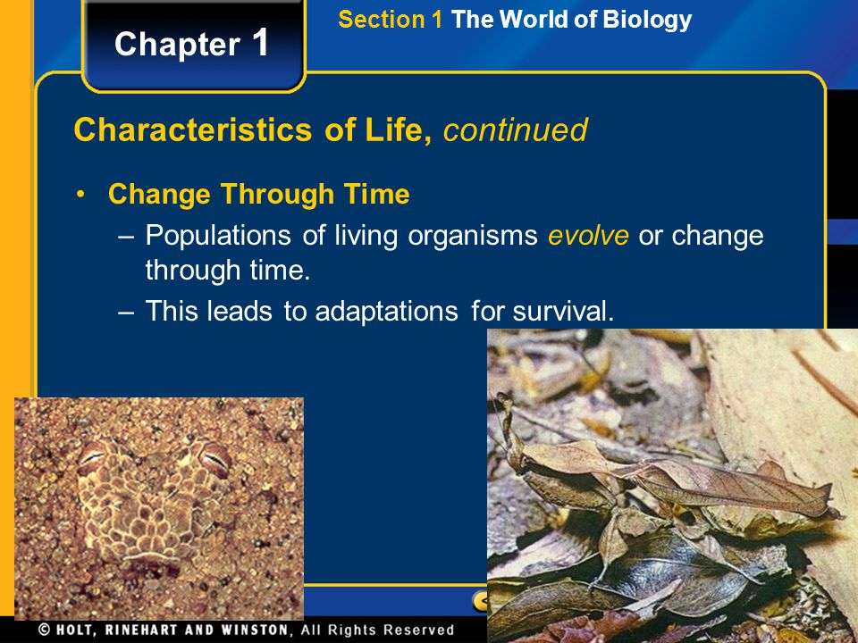 Section 1 The World of Biology Chapter 1 Characteristics of Life, continued Change Through Time –Populations of living organisms evolve or change thro