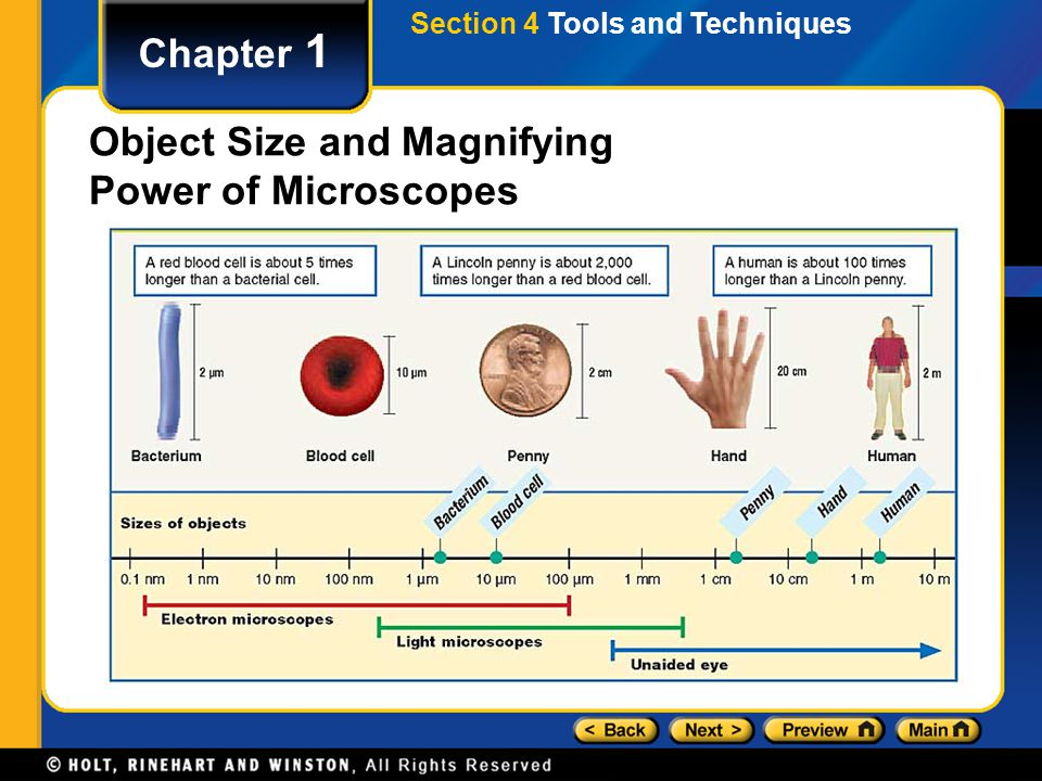 Section 4 Tools and Techniques Chapter 1 Object Size and Magnifying Power of Microscopes