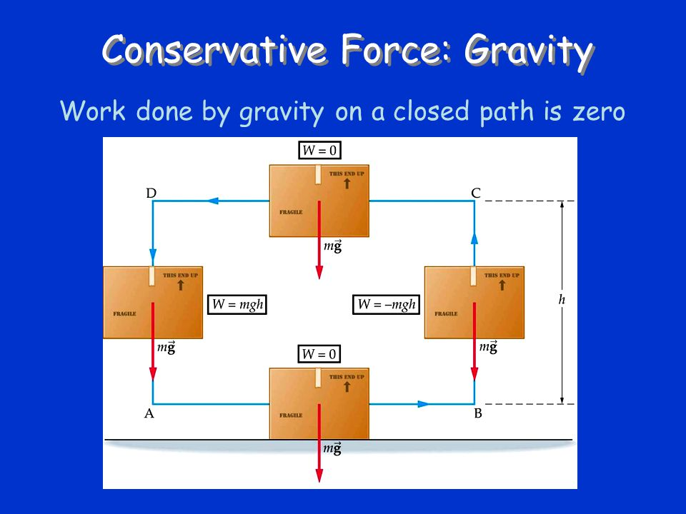 Conservative Force: Gravity Work done by gravity on a closed path is zero