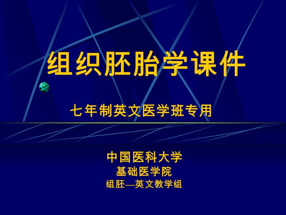 组织胚胎学课件 七年制英文医学班专用 中国医科大学 基础医学院 组胚 — 英文教学组