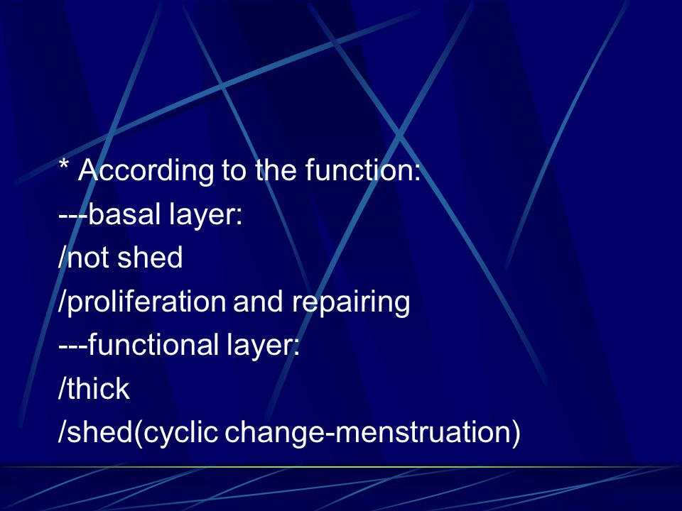 * According to the function: ---basal layer: /not shed /proliferation and repairing ---functional layer: /thick /shed(cyclic change-menstruation)