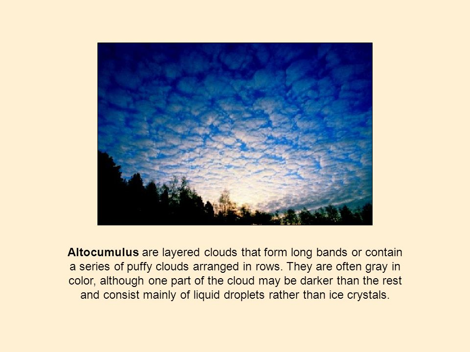 Altocumulus are layered clouds that form long bands or contain a series of puffy clouds arranged in rows. They are often gray in color, although one p