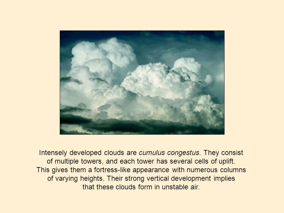 Intensely developed clouds are cumulus congestus. They consist of multiple towers, and each tower has several cells of uplift. This gives them a fortr