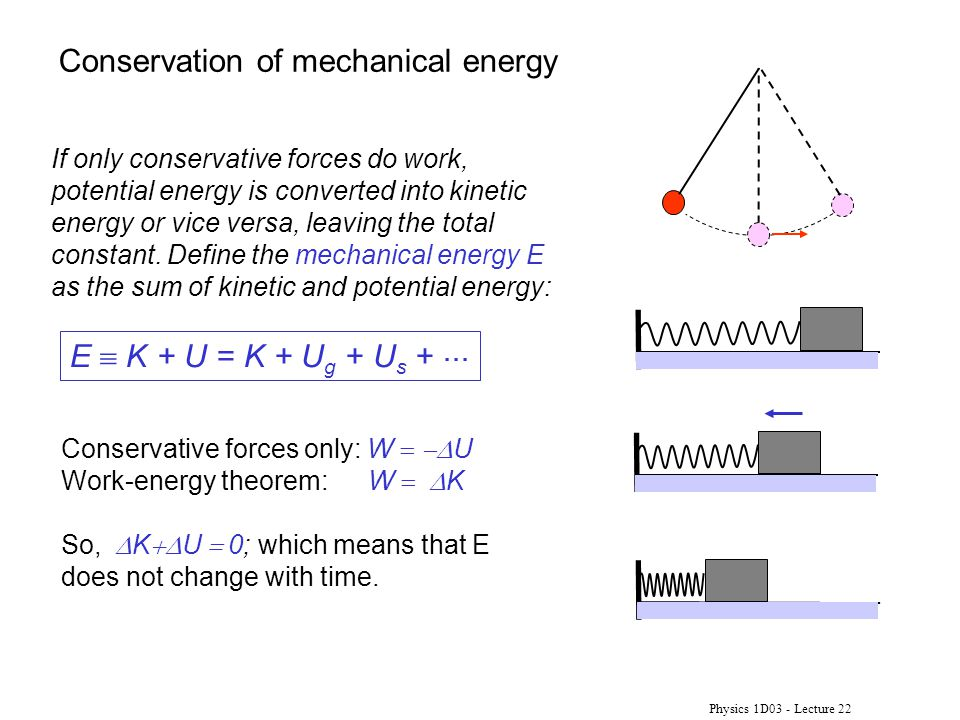 Physics 1D03 - Lecture 22 If only conservative forces do work, potential energy is converted into kinetic energy or vice versa, leaving the total constant.