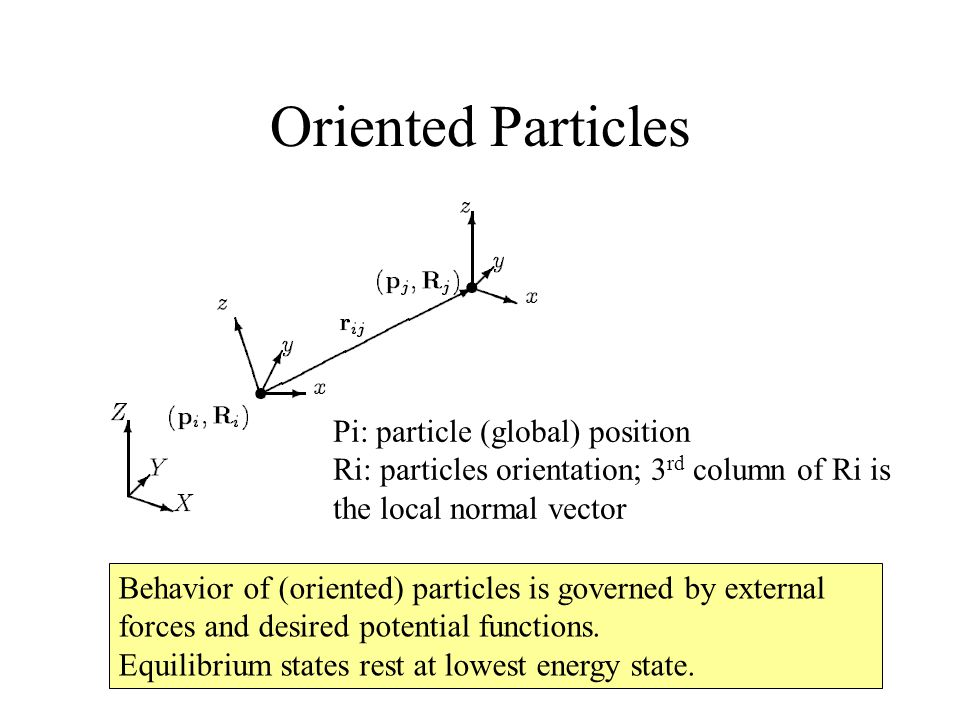 Oriented Particles Pi: particle (global) position Ri: particles orientation; 3 rd column of Ri is the local normal vector Behavior of (oriented) particles is governed by external forces and desired potential functions.