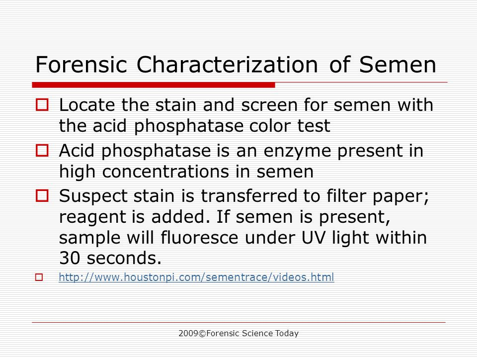 2009©Forensic Science Today Forensic Characterization of Semen  Locate the stain and screen for semen with the acid phosphatase color test  Acid phosphatase is an enzyme present in high concentrations in semen  Suspect stain is transferred to filter paper; reagent is added.