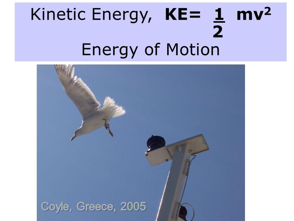 Kinetic Energy, KE= 1 mv 2 2 Energy of Motion