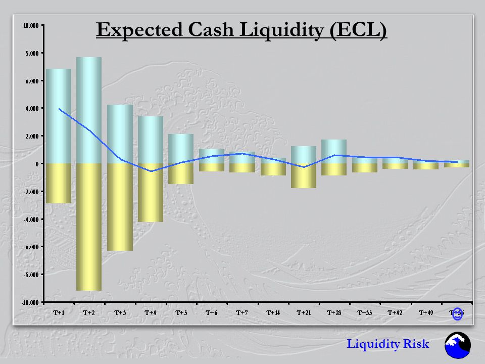 Liquidity Risk Expected Cash Liquidity (ECL)