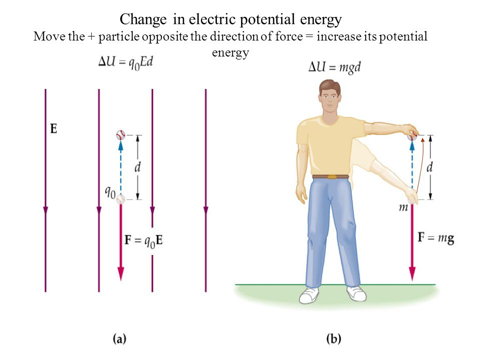 Walker Chapter 206 Question 1 A positive charge moves from a) to b) in the electric field E.