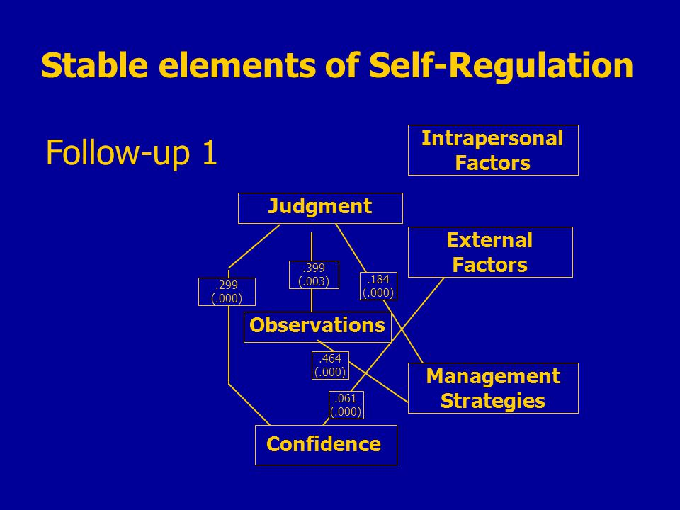 Follow-up 1.184 (.000) Intrapersonal Factors External Factors Management Strategies Judgment Observations Confidence.299 (.000).061 (.000) Stable elements of Self-Regulation.399 (.003).464 (.000)