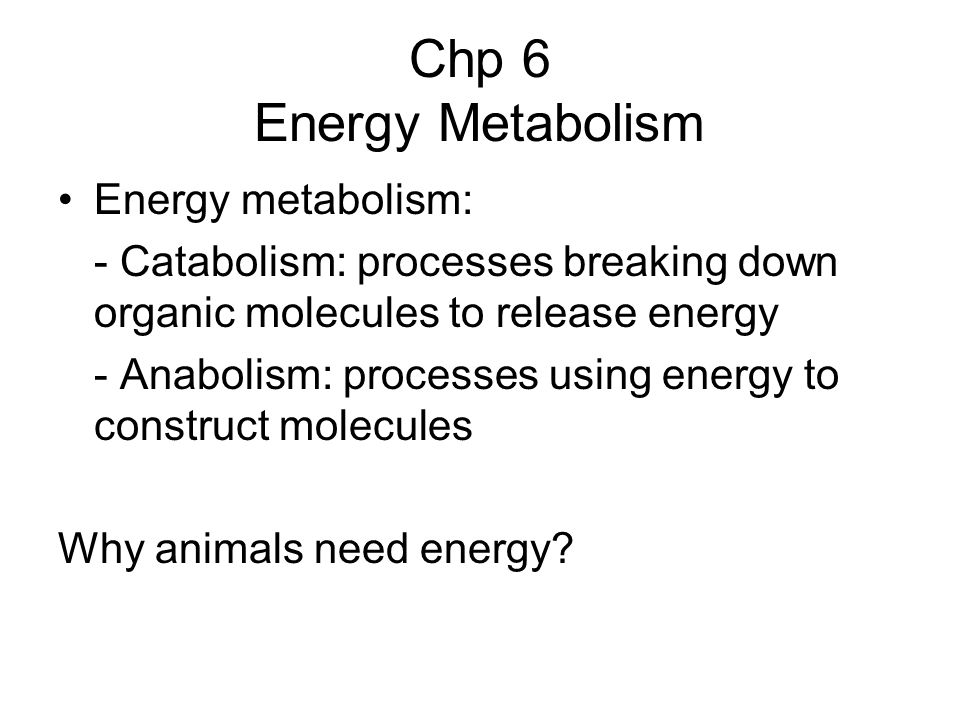 Fundamentals of Animal Energetics Energy is needed for work Animals can use chemical, electrical and mechanical energies (high grade energy) for work but not thermal energy (low grade energy).