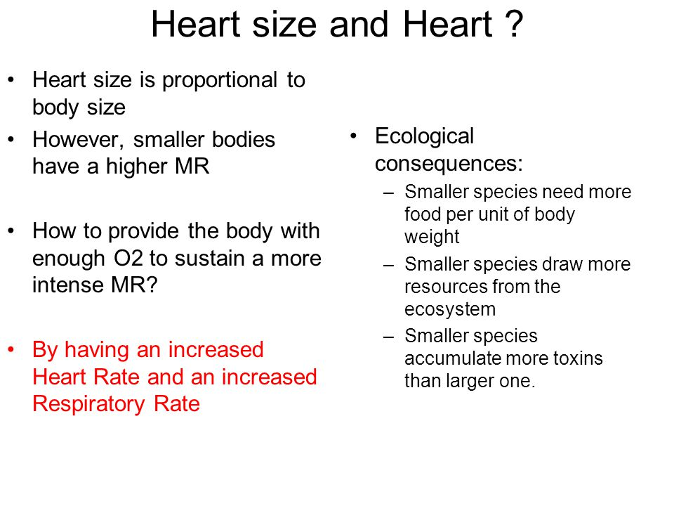 Heart size and Heart .