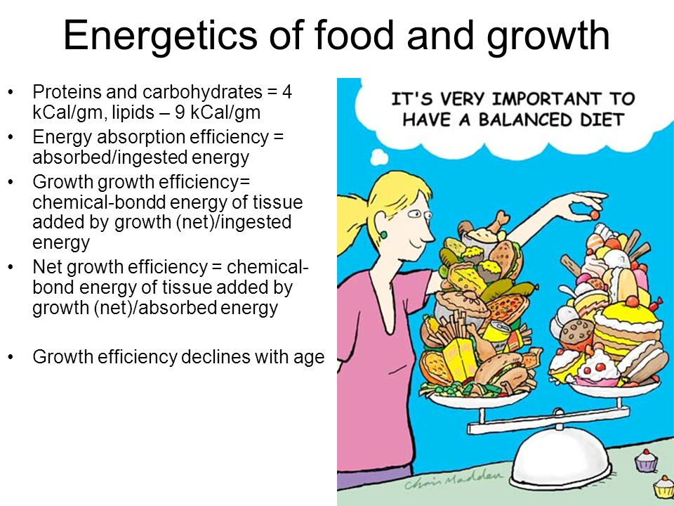 Energetics of food and growth Proteins and carbohydrates = 4 kCal/gm, lipids – 9 kCal/gm Energy absorption efficiency = absorbed/ingested energy Growth growth efficiency= chemical-bondd energy of tissue added by growth (net)/ingested energy Net growth efficiency = chemical- bond energy of tissue added by growth (net)/absorbed energy Growth efficiency declines with age