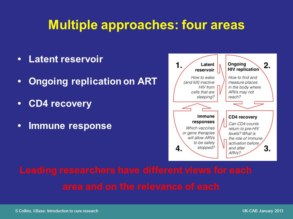 S Collins, I-Base: Introduction to cure researchUK-CAB January 2013 Multiple approaches: four areas Latent reservoir Ongoing replication on ART CD4 recovery Immune response Leading researchers have different views for each area and on the relevance of each