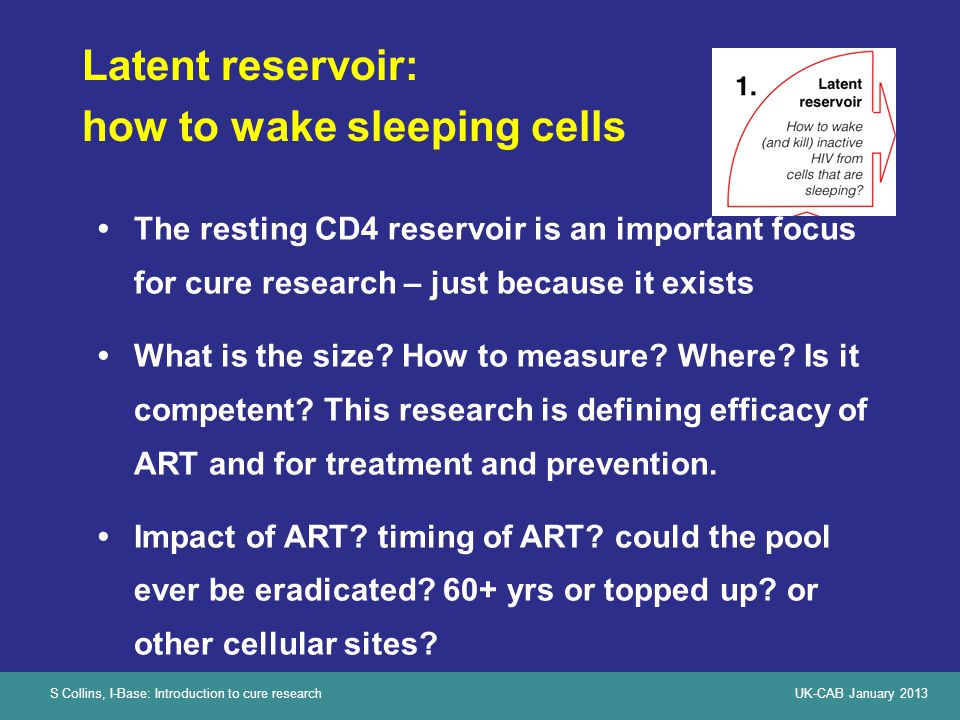 S Collins, I-Base: Introduction to cure researchUK-CAB January 2013 Latent reservoir: how to wake sleeping cells The resting CD4 reservoir is an important focus for cure research – just because it exists What is the size.