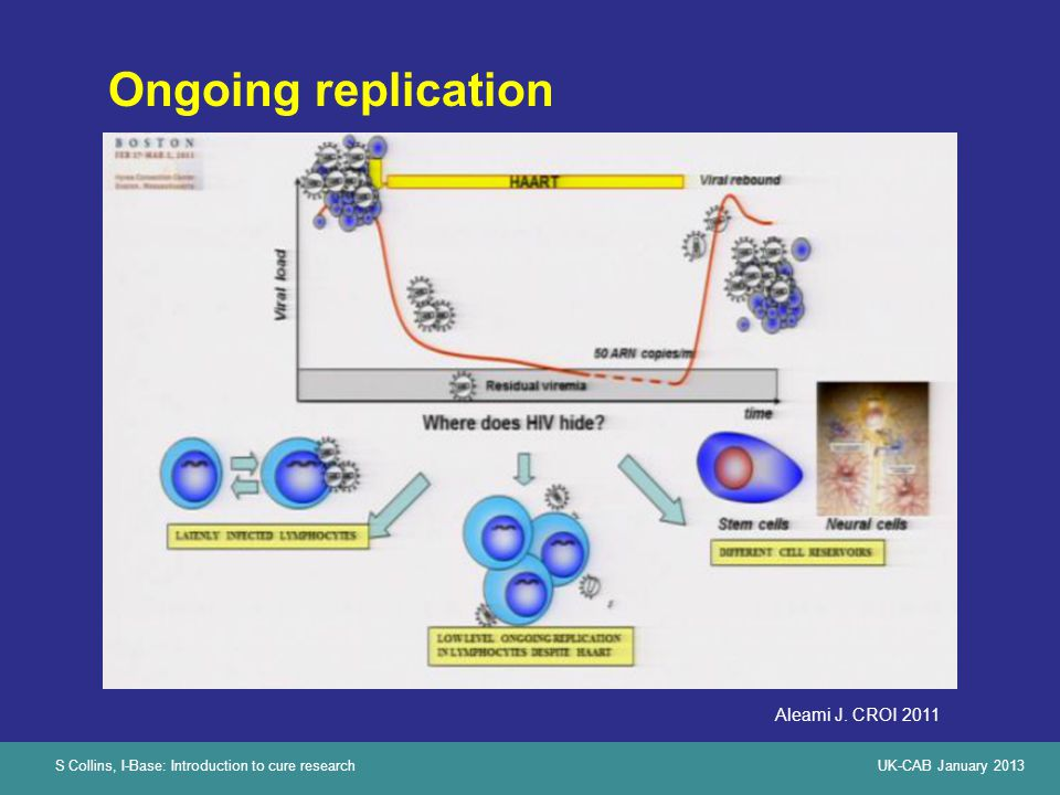 S Collins, I-Base: Introduction to cure researchUK-CAB January 2013 Ongoing replication Aleami J.