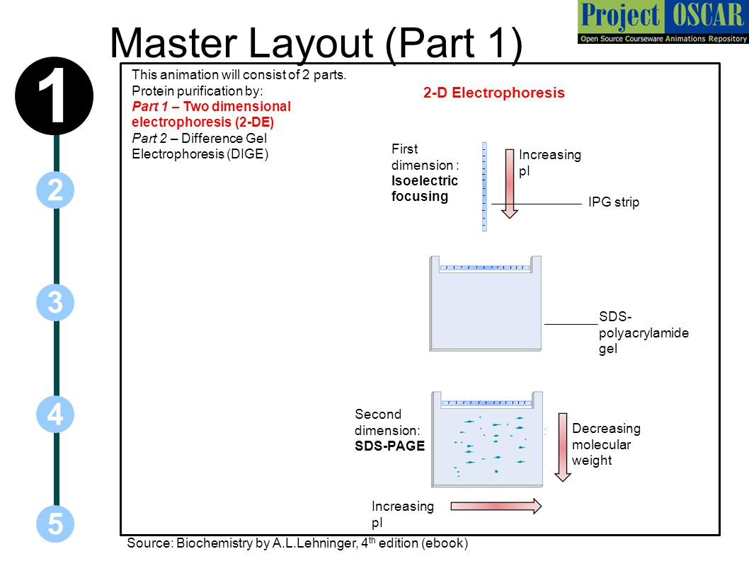 Master Layout (Part 1) 5 3 2 4 1 This animation will consist of 2 parts.