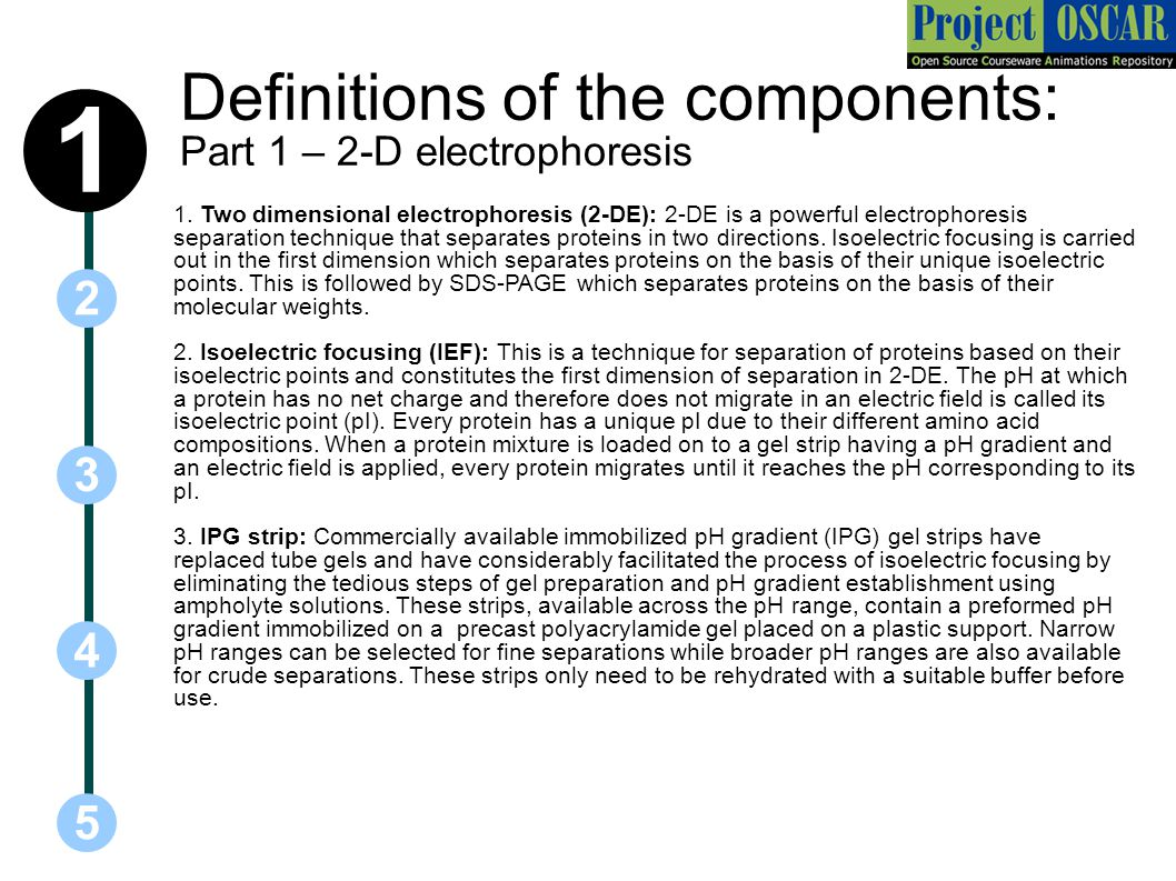 Definitions of the components: Part 1 – 2-D electrophoresis 5 3 2 4 1 1.