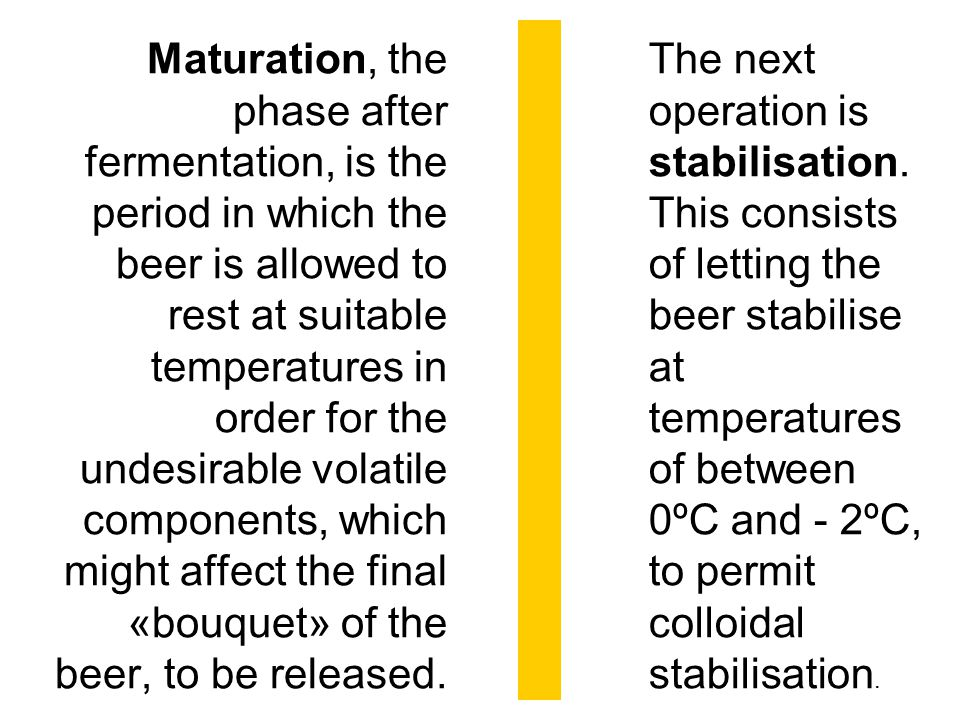 Maturation, the phase after fermentation, is the period in which the beer is allowed to rest at suitable temperatures in order for the undesirable vol