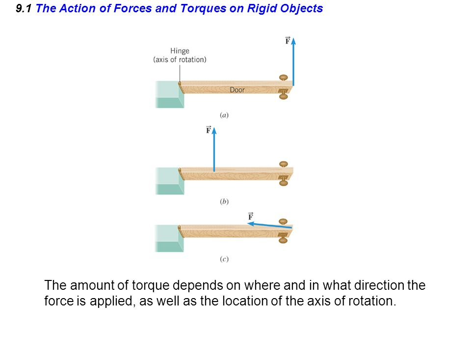 9.1 The Action of Forces and Torques on Rigid Objects The amount of torque depends on where and in what direction the force is applied, as well as the