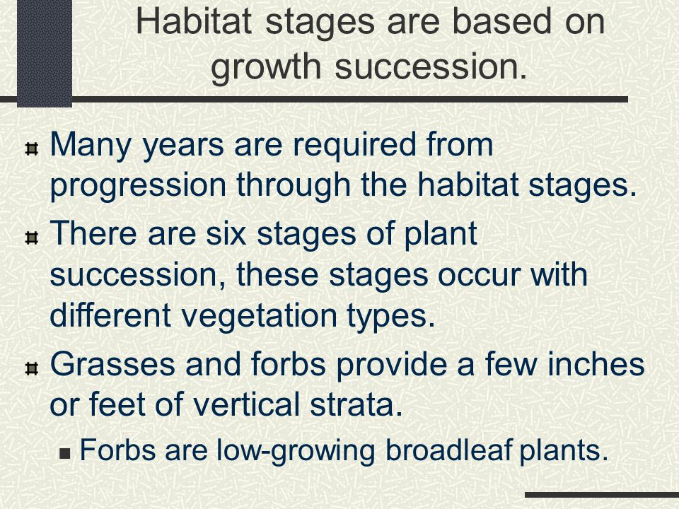 Habitat stages are based on growth succession.