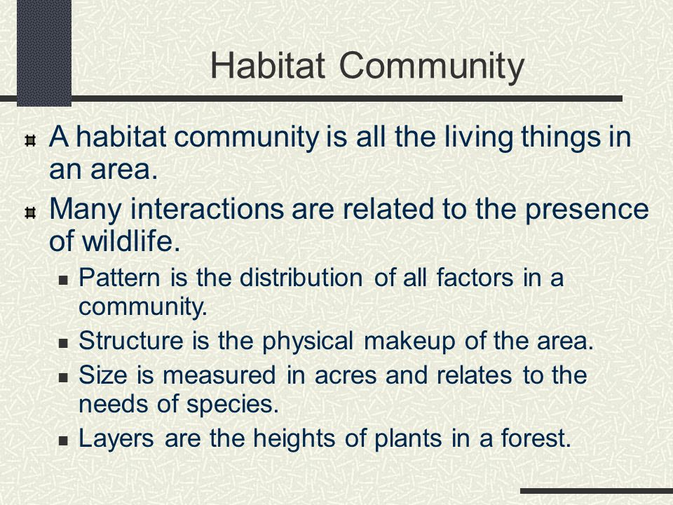 Habitat Community A habitat community is all the living things in an area.