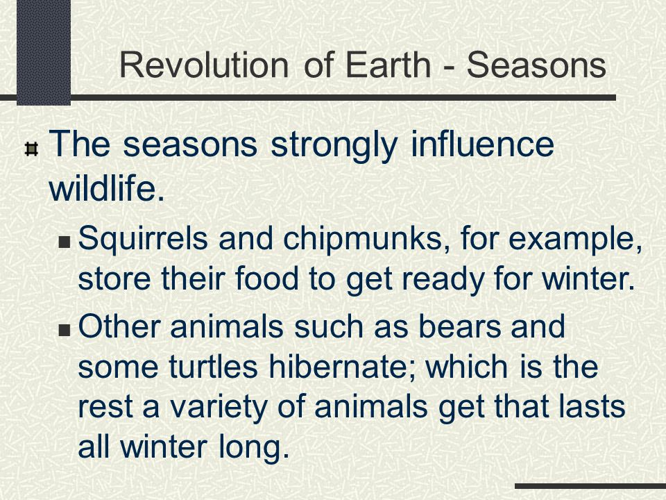 Revolution of Earth - Seasons The seasons strongly influence wildlife.