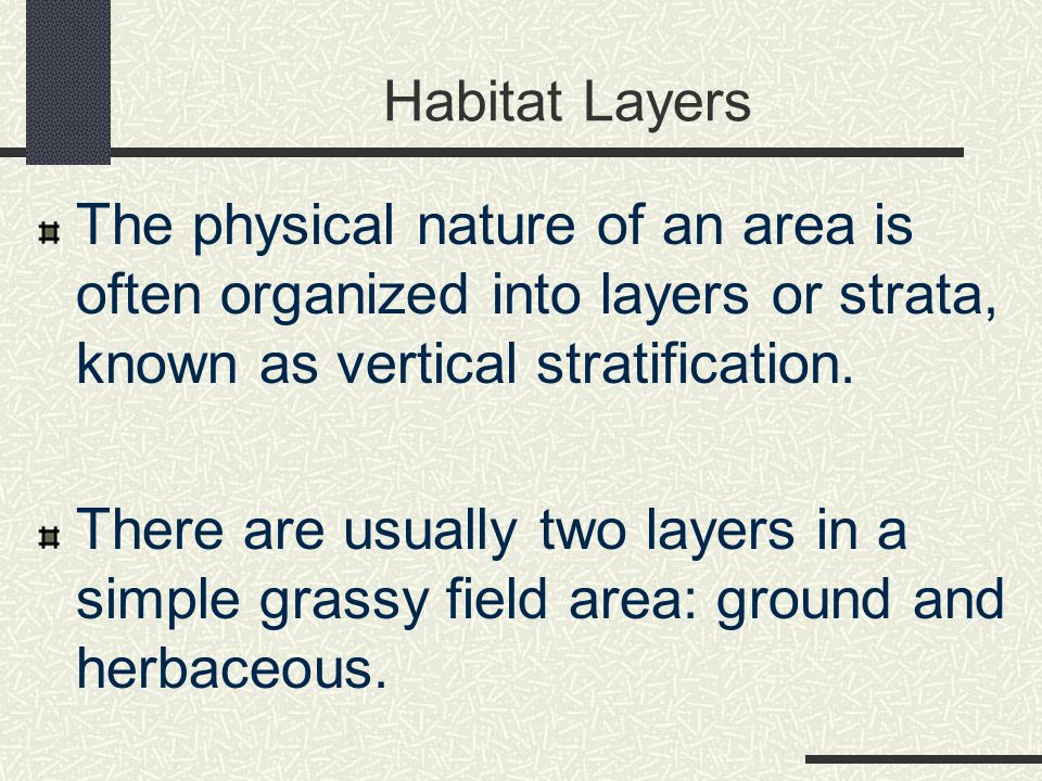 Habitat Layers The physical nature of an area is often organized into layers or strata, known as vertical stratification.
