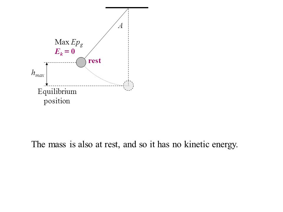 rest A h max Equilibrium position The mass is also at rest, and so it has no kinetic energy. Max Ep g E k = 0
