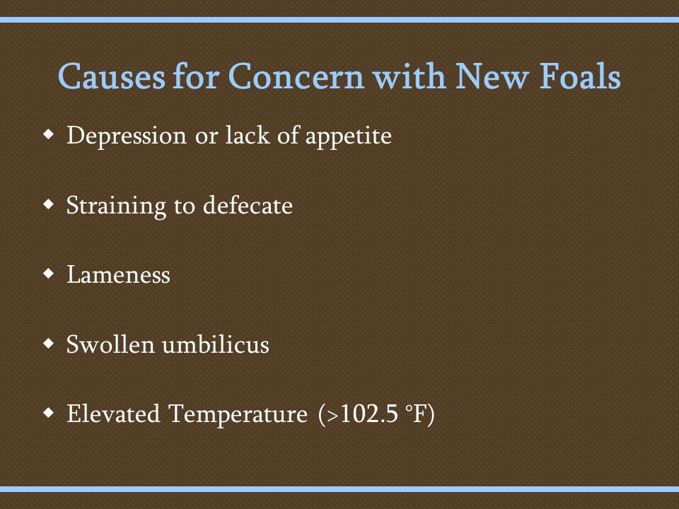Causes for Concern with New Foals  Depression or lack of appetite  Straining to defecate  Lameness  Swollen umbilicus  Elevated Temperature (>102.5 °F)