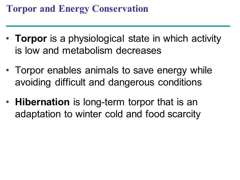 Torpor and Energy Conservation Torpor is a physiological state in which activity is low and metabolism decreases Torpor enables animals to save energy