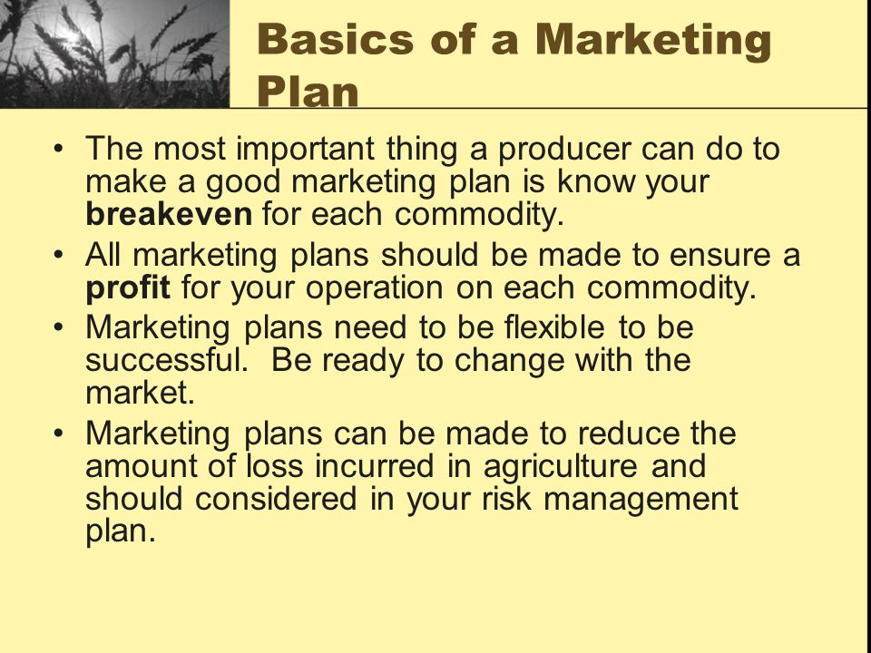 Marketing Plan Questions What is my breakeven and how much profit do I need.