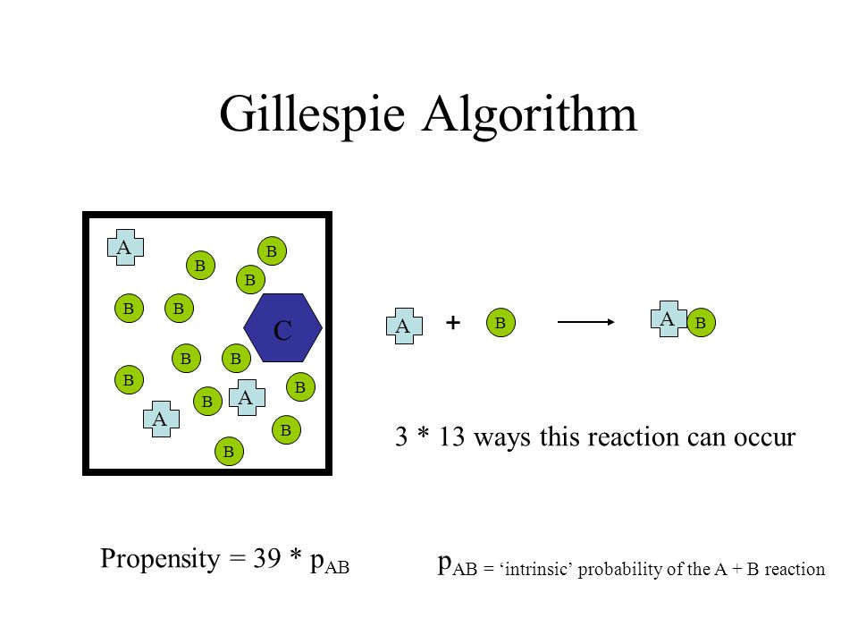 Gillespie Algorithm B A A A B B B B B B B B B B B B C + A A B Propensity = 39 * p AB 3 * 13 ways this reaction can occur p AB = 'intrinsic' probability of the A + B reaction