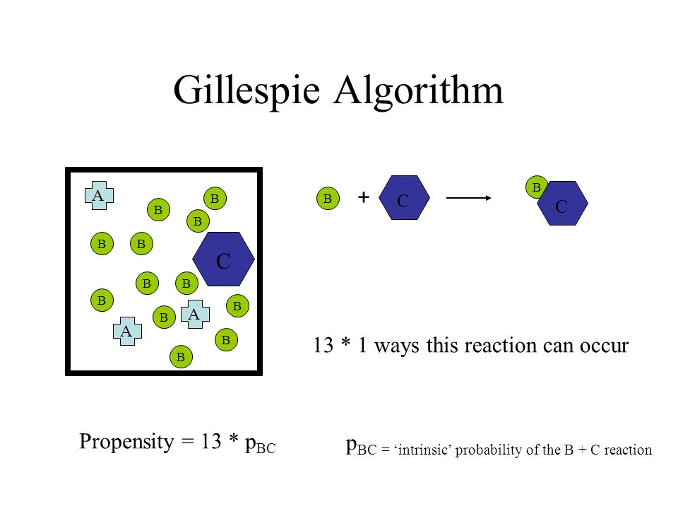 Gillespie Algorithm A A A B B B B B B B B B B B B C Propensity = 13 * p BC 13 * 1 ways this reaction can occur p BC = 'intrinsic' probability of the B + C reaction C B + B C