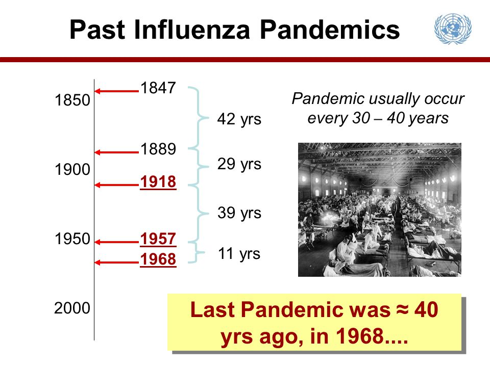 Past Influenza Pandemics 1900 1850 1950 2000 1847 1889 1918 1957 1968 42 yrs 29 yrs 39 yrs 11 yrs Pandemic usually occur every 30 – 40 years Last Pand