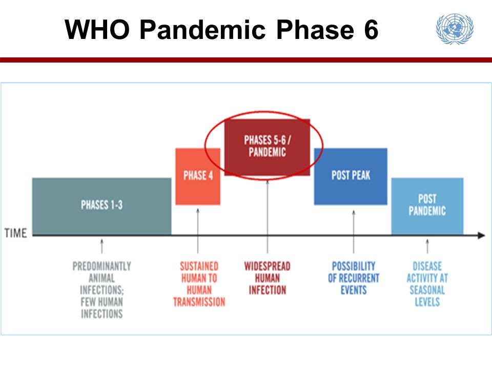 WHO Pandemic Phase 6