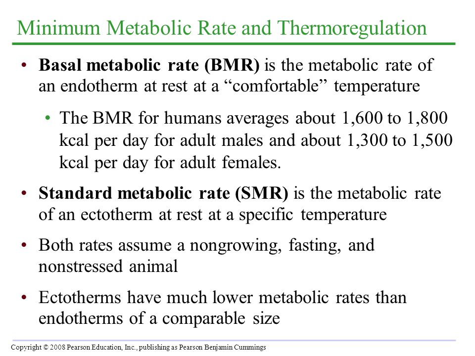 """Minimum Metabolic Rate and Thermoregulation Basal metabolic rate (BMR) is the metabolic rate of an endotherm at rest at a """"comfortable"""" temperature Th"""