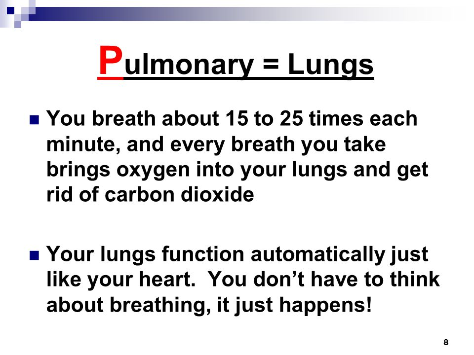 8 P ulmonary = Lungs You breath about 15 to 25 times each minute, and every breath you take brings oxygen into your lungs and get rid of carbon dioxide Your lungs function automatically just like your heart.