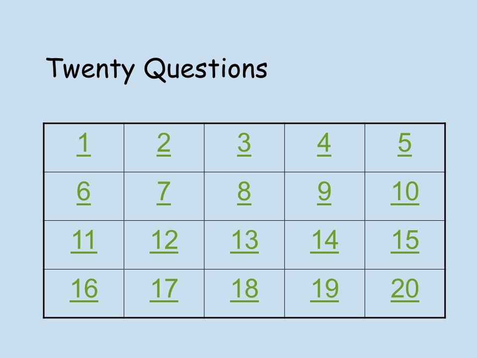 Twenty Questions 12345 678910 1112131415 1617181920