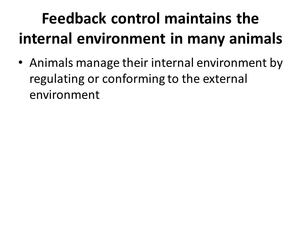 Feedback control maintains the internal environment in many animals Animals manage their internal environment by regulating or conforming to the external environment