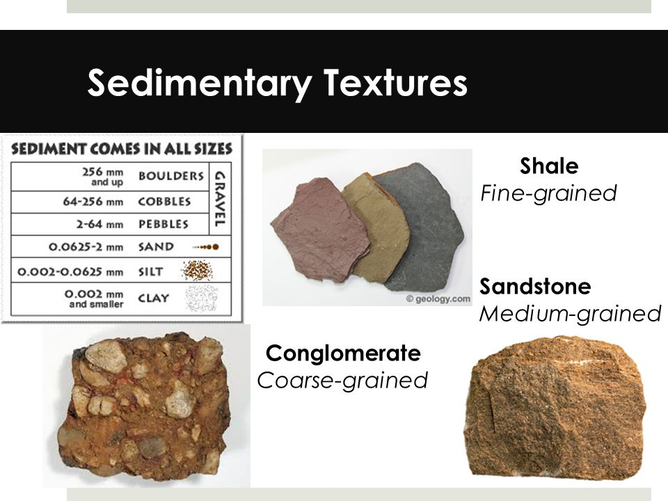 Sedimentary Textures Shale Fine-grained Sandstone Medium-grained Conglomerate Coarse-grained