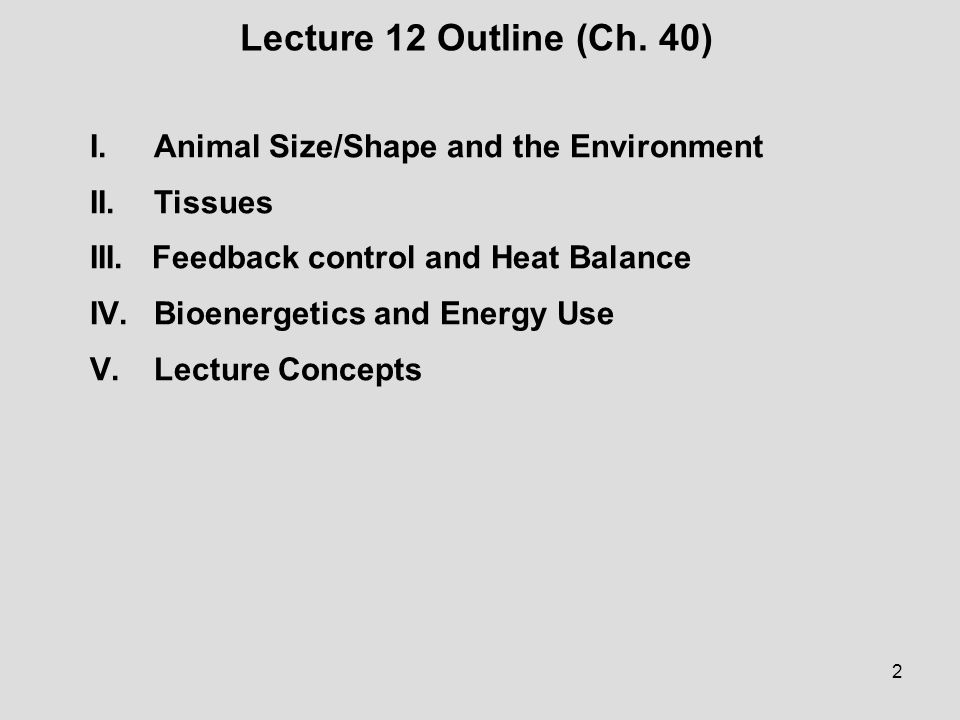 2 Lecture 12 Outline (Ch. 40) I.Animal Size/Shape and the Environment II.Tissues III. Feedback control and Heat Balance IV.Bioenergetics and Energy Us