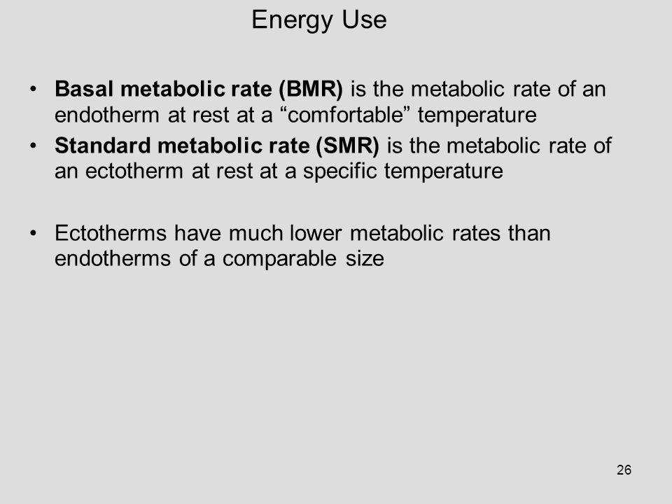 26 Basal metabolic rate (BMR) is the metabolic rate of an endotherm at rest at a comfortable temperature Standard metabolic rate (SMR) is the metabolic rate of an ectotherm at rest at a specific temperature Ectotherms have much lower metabolic rates than endotherms of a comparable size Energy Use