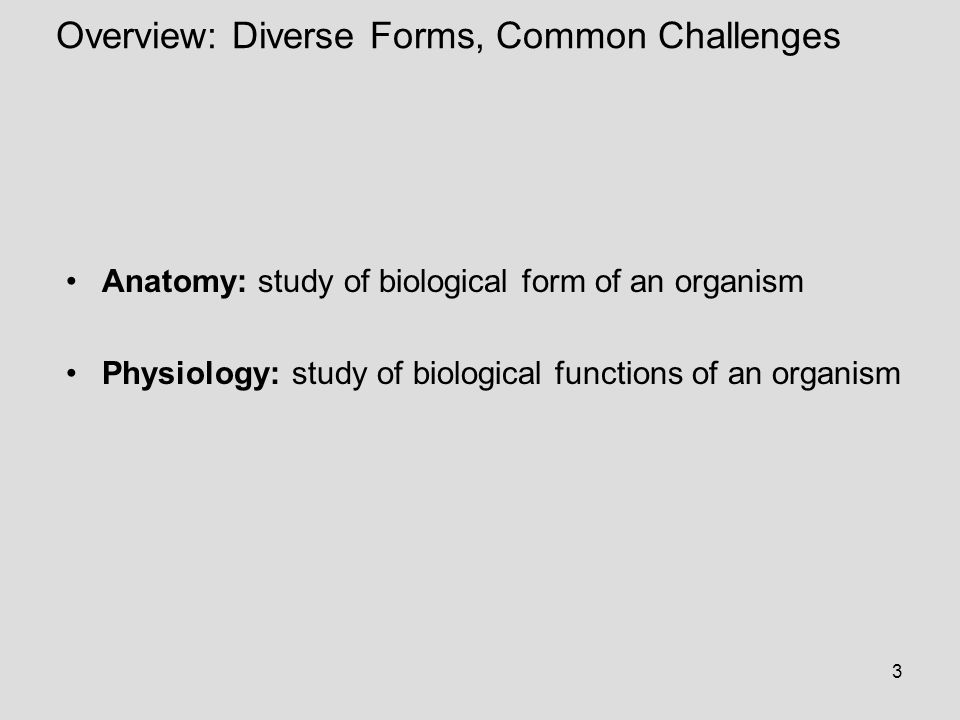 3 Overview: Diverse Forms, Common Challenges Anatomy: study of biological form of an organism Physiology: study of biological functions of an organism